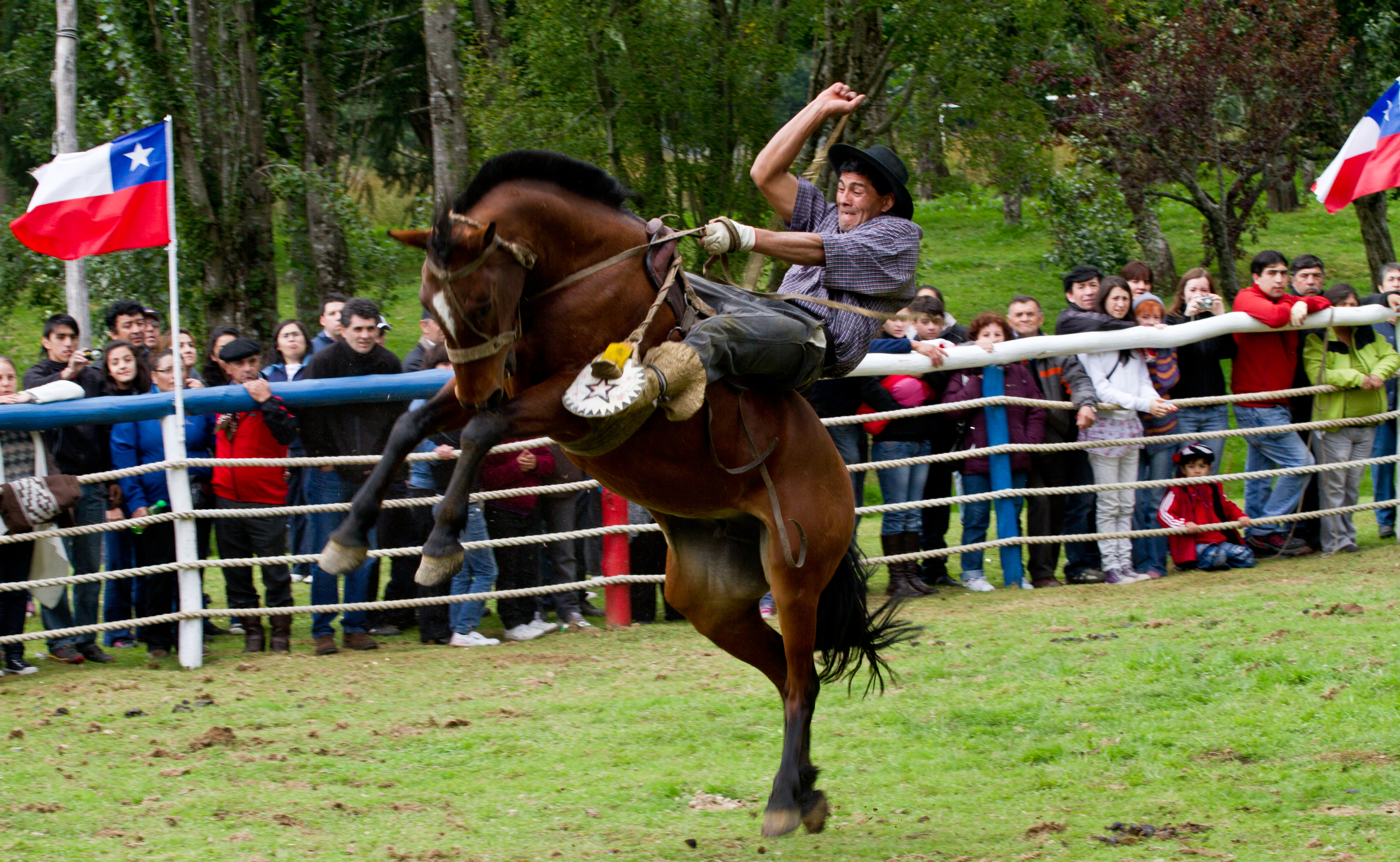 A Chilean-style rodeo in Aysen.