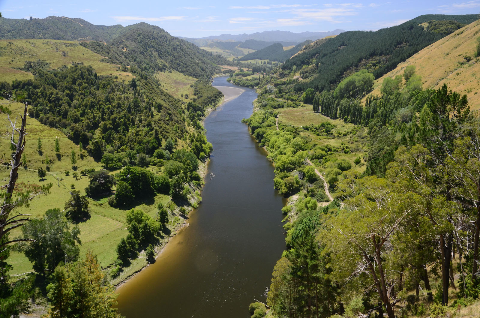 Whanganui River, New Zealand. Photo: Flickr/Tim Proffitt-White